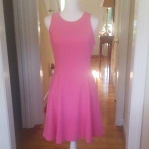 Pink WHBM career summer dress size 4